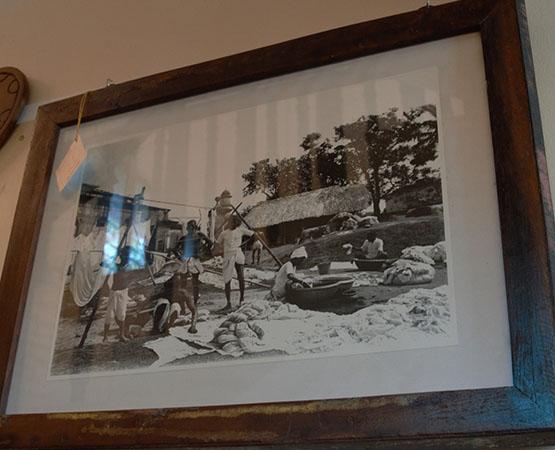 Bg Wall Mounted Photo Frame
